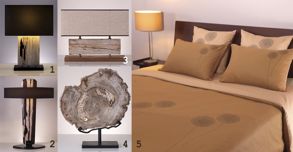 piment rouge indonesia blog petrified wood and fossil wood lamps 5